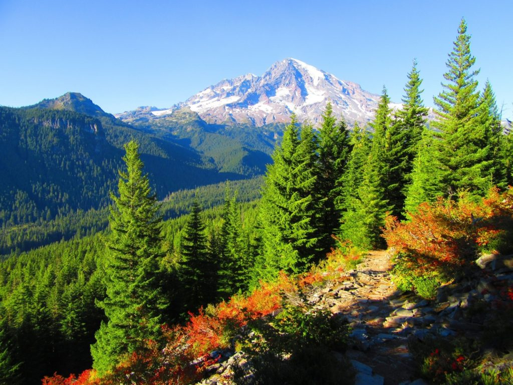 spring hikes Mount Rainier